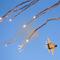 Israel nã tên lửa sang Syria, ngay sau khi ông Biden nhậm chức