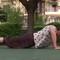 Cụ bà 81 tuổi hít đất 100 cái mỗi sáng
