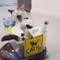 Chú mèo lười nằm phè phỡn trên robot hút bụi