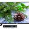 3 mẫu TV thông minh giá rẻ dưới 5 triệu đồng đáng mua dịp tết