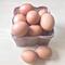 7 loại thực phẩm giàu vitamin B12 giúp tăng cường hệ thống miễn dịch