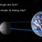 Năm nhuận trên Google Doodle