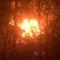 Đồng Nai: Cháy kèm theo nổ khiến người hoảng sợ