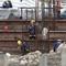 Video: Tái khởi công các công trình xây dựng tại vùng xanh