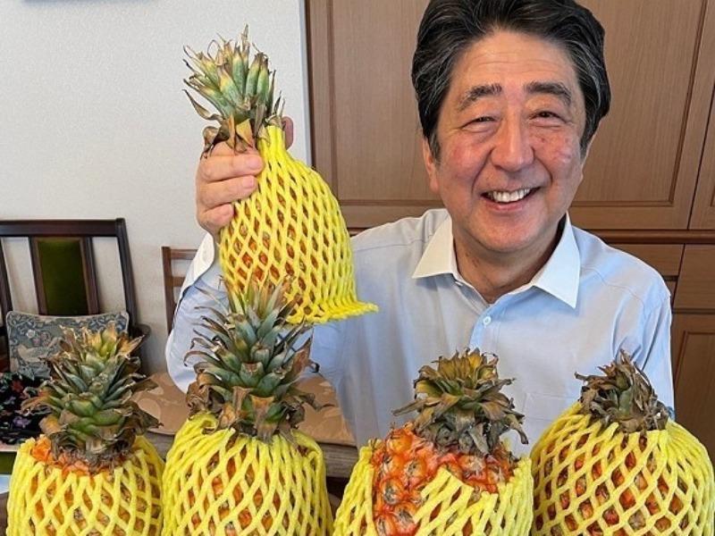 Dân Nhật ủng hộ dứa Đài Loan sau khi Trung Quốc cấm nhập khẩu