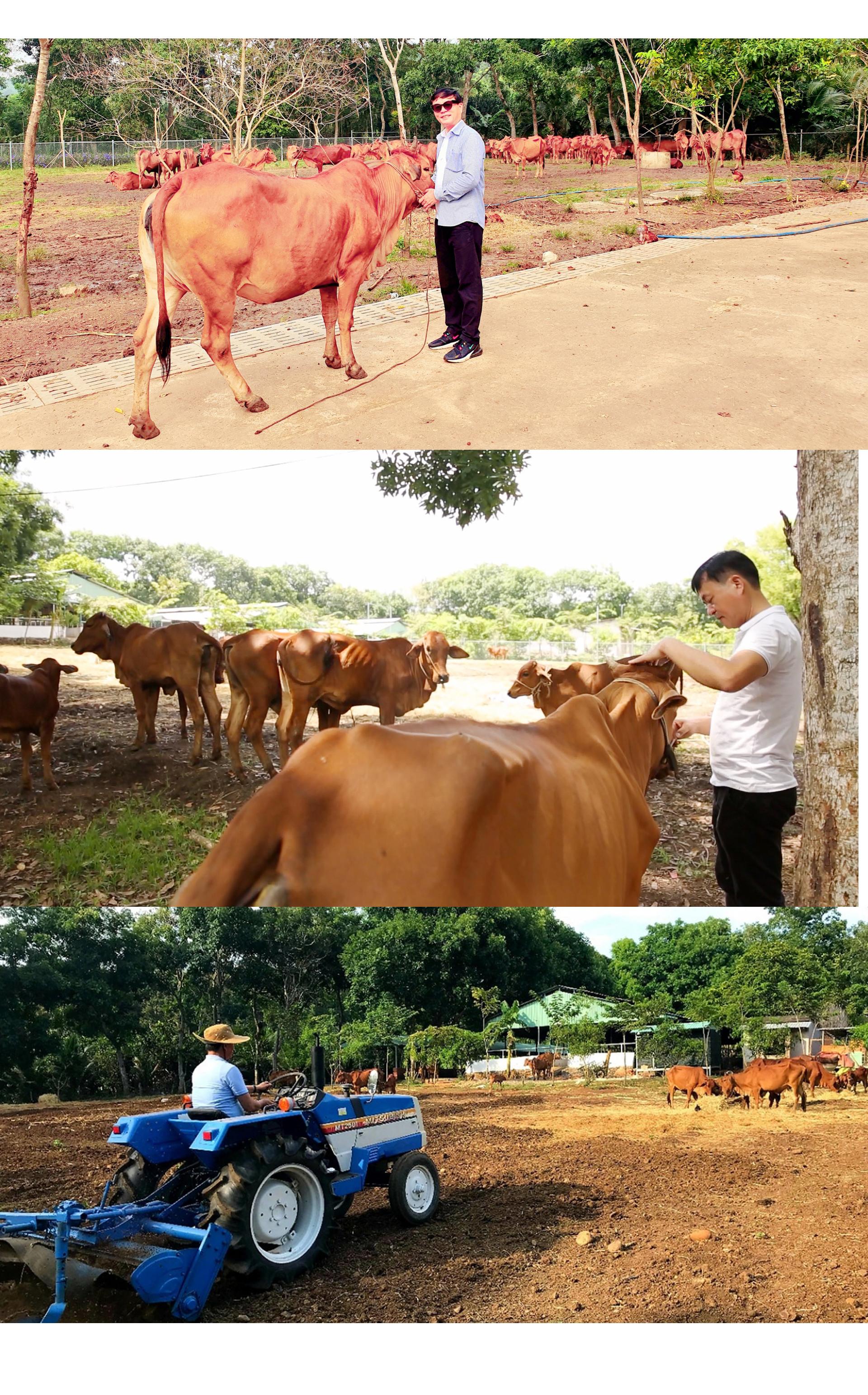 Hành trình 'phải về thôi' của Giáo sư Nguyễn Văn Thuận - ảnh 11