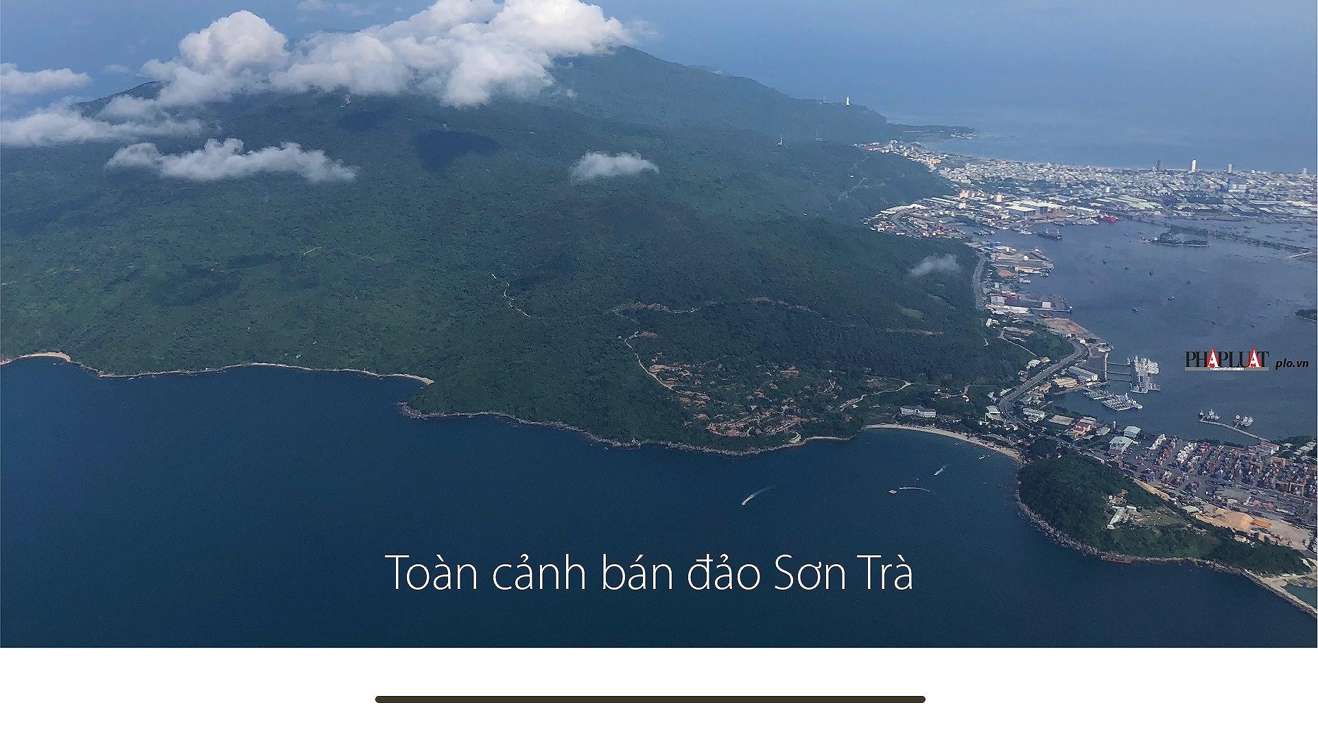 Đà Nẵng qua một năm sóng gió - ảnh 13