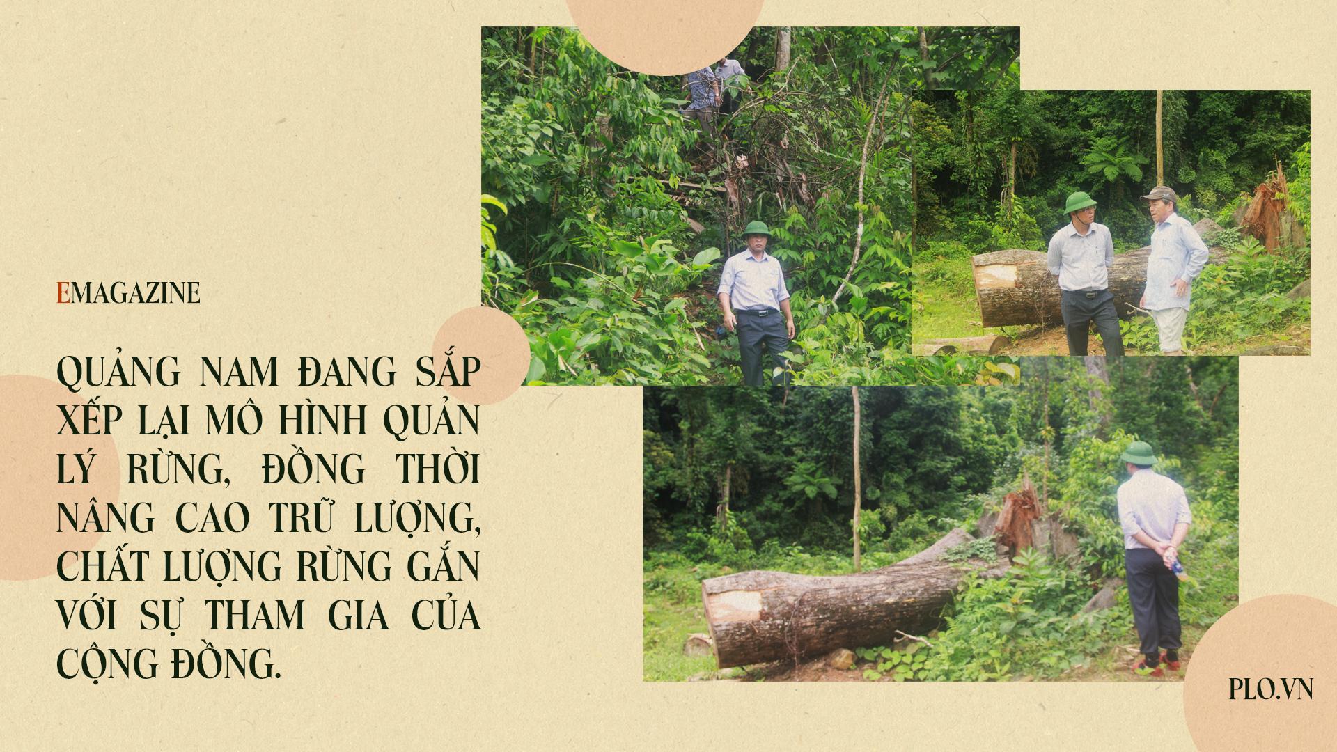 Emagazine: Chủ tịch Quảng Nam và 4 điểm nhấn phát triển - ảnh 5