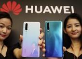 Huawei tiếp tục gặp hạn khi dòng P30 Series bị ngừng bán
