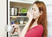 Vì sao thực phẩm lưu trữ trong tủ lạnh cũng dễ bị hỏng?