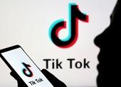 VNG yêu cầu TikTok bồi thường 221 tỉ đồng vì vi phạm bản quyền