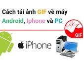 Cách tải ảnh GIF về điện thoại Android, iPhone và PC