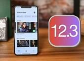 Cập nhật ngay iOS 12.3 để sửa 20 lỗi bảo mật