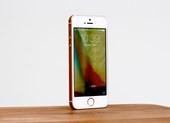 iPhone SE bất ngờ giảm giá chỉ còn 2,5 triệu đồng