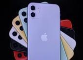 iPhone 11 chính hãng sẽ có giá khoảng 21,9 triệu đồng