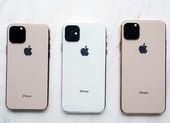 iPhone 11 giảm nhẹ 4 triệu đồng sau một tuần