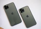 Bị chê tơi tả, iPhone 11 vẫn bán 'đắt như tôm tươi'