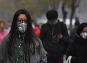 Những giải pháp bình dân giúp hạn chế bụi mịn PM2.5