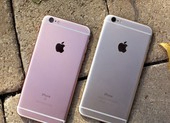 iPhone 6S giá chỉ còn 3,2 triệu đồng, xài 2 năm không lỗi thời