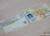 Cách kiểm tra giấy phép lái xe là thật hay giả ngay tại nhà