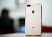 iPhone 7 Plus giá 6,3 triệu đồng, xài 3 năm không lo lỗi thời