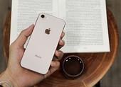 iPhone 8 giảm giá chỉ còn 6,4 triệu đồng