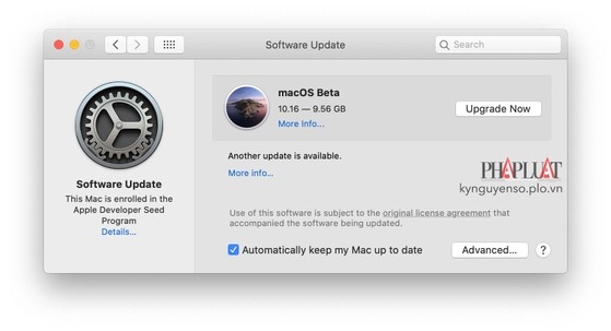 tai-ve-macos-11-beta