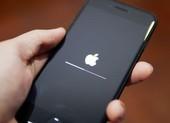 4 lý do vì sao bạn không nên cập nhật iOS 14 beta bây giờ