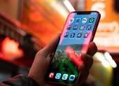 Người dùng than trời vì iPhone 12 gặp sự cố màn hình cảm ứng