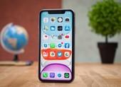 iPhone 11 giá chỉ còn 13,7 triệu đồng