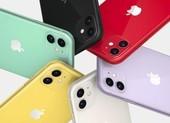 iPhone 11 64 GB giá chỉ còn 12,9 triệu đồng