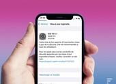 Người dùng cần cập nhật iOS 14.4.1 ngay lập tức