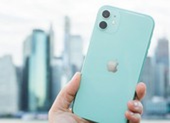3 mẫu iPhone giảm giá mạnh đầu tháng 4, giá chỉ 5,7 triệu đồng
