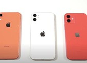 iPhone 11 và iPhone 12 giảm hiệu suất khi cài đặt iOS 14.5.1?