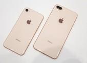 iPhone 8 Plus 64 GB giá chỉ còn 6,79 triệu đồng