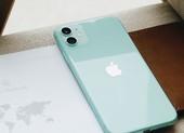 Sau 2 năm ra mắt, iPhone 11 64 GB chỉ còn 11,7 triệu đồng