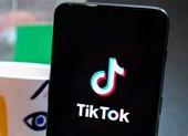 Apple sử dụng cao chiêu để ngăn chặn nỗ lực theo dõi của TikTok