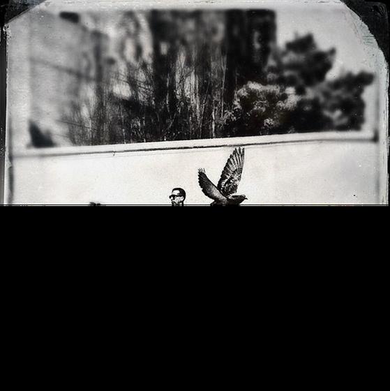 Bức ảnh đen trắng tuyệt đẹp của nhiếp ảnh gia ichard Koci Hernandez