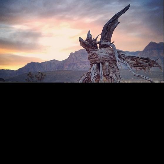 Bức ảnh do tác giả Nosyaj Zeuqram chụp bằng điện thoại Nokia.