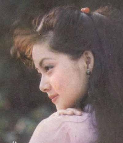 Sau Hồng lâu mộng, Trương Lợi tham gia một số phim khác