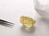 Chiêm ngưỡng viên kim cương hiếm, to bằng quả trứng gà