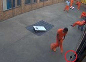 Máy bay không người lái 'tuồn' cần sa vào tù cho phạm nhân