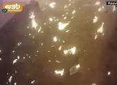 Khoảnh khắc máy bay Ukraine nổ tung sau khi bị Iran bắn rơi