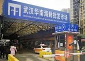 WHO điều tra khu chợ Vũ Hán, ổ dịch COVID-19 đầu tiên