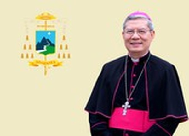 Giáo phận Đà Nẵng tạm dừng Thánh lễ tập trung