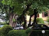 Bộ Công an làm việc đột xuất với Thành ủy Đà Nẵng