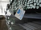 DN ở châu Âu cung cấp thiết bị cho thép Hòa Phát