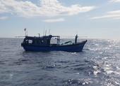 Đà Nẵng ra công điện ứng phó bão số 5