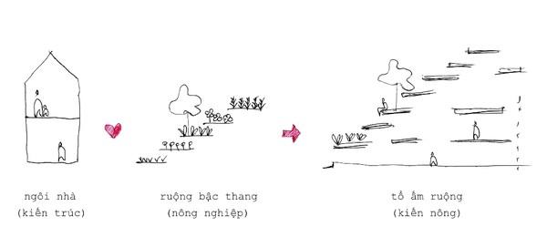 ngoi-nha-co-ruong-bac-thang-mat-tien-19