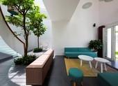 Mang thiên nhiên vào nhà nên lưu ý điều gì?